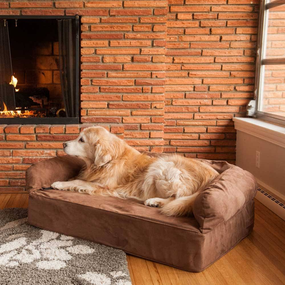 Replacement Cover - Snoozer Luxury Dog Sofa | Dog Couch pertaining to Snoozer Luxury Dog Sofas (Image 3 of 15)