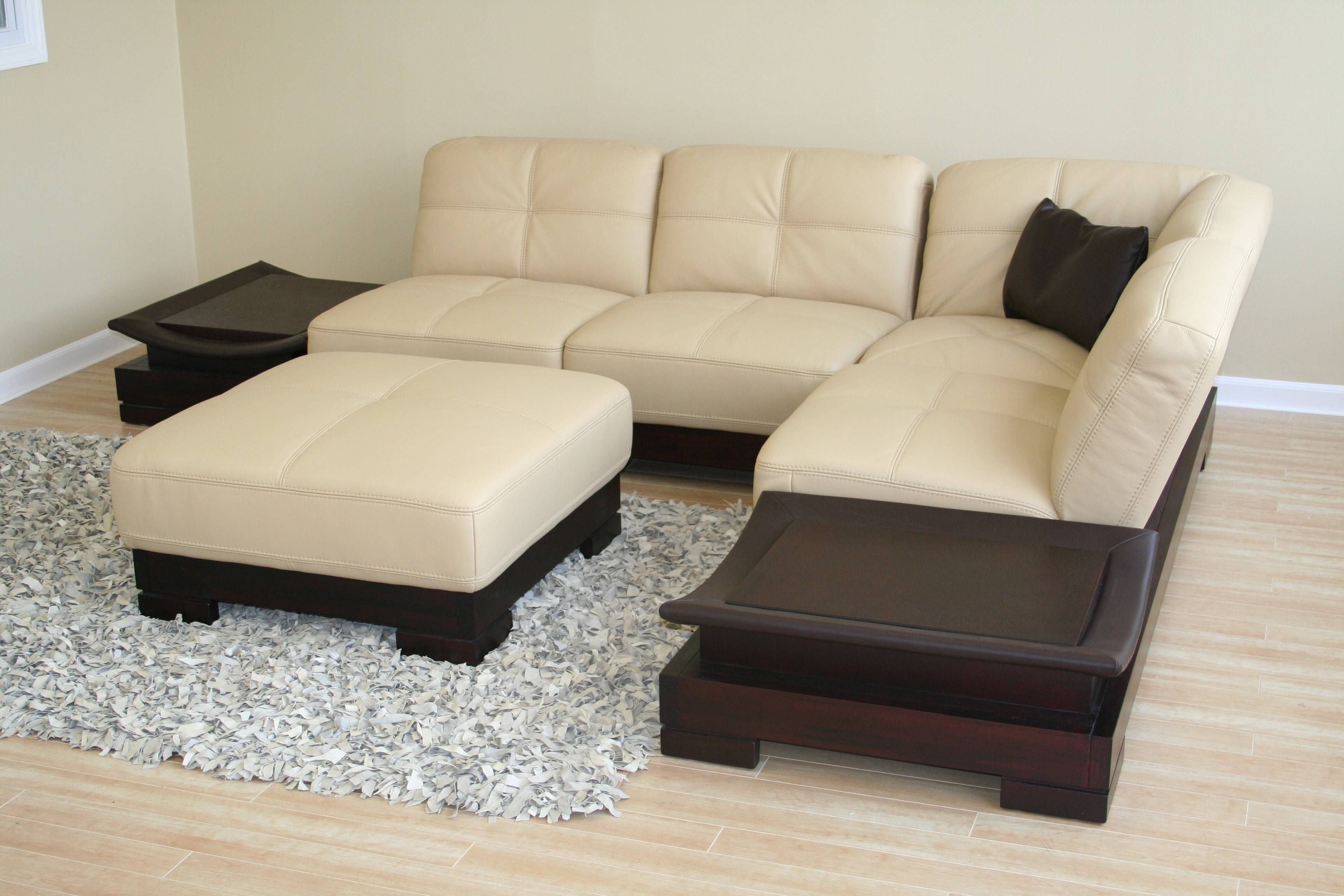 Small Scale Sectional Sofa - Cleanupflorida intended for Small Scale Leather Sectional Sofas (Image 11 of 15)