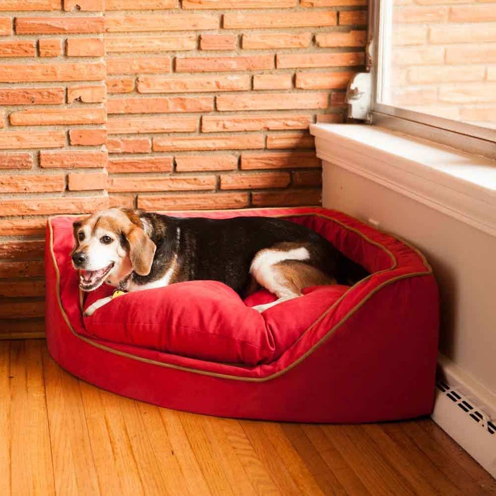Snoozer Corner Dog Bed - Dog Beds & Carriers within Snoozer Luxury Dog Sofas (Image 5 of 15)