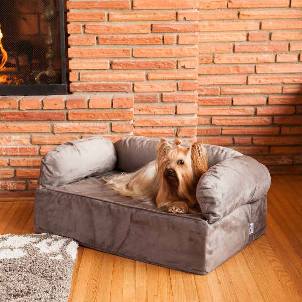 Featured Photo of Snoozer Luxury Dog Sofas