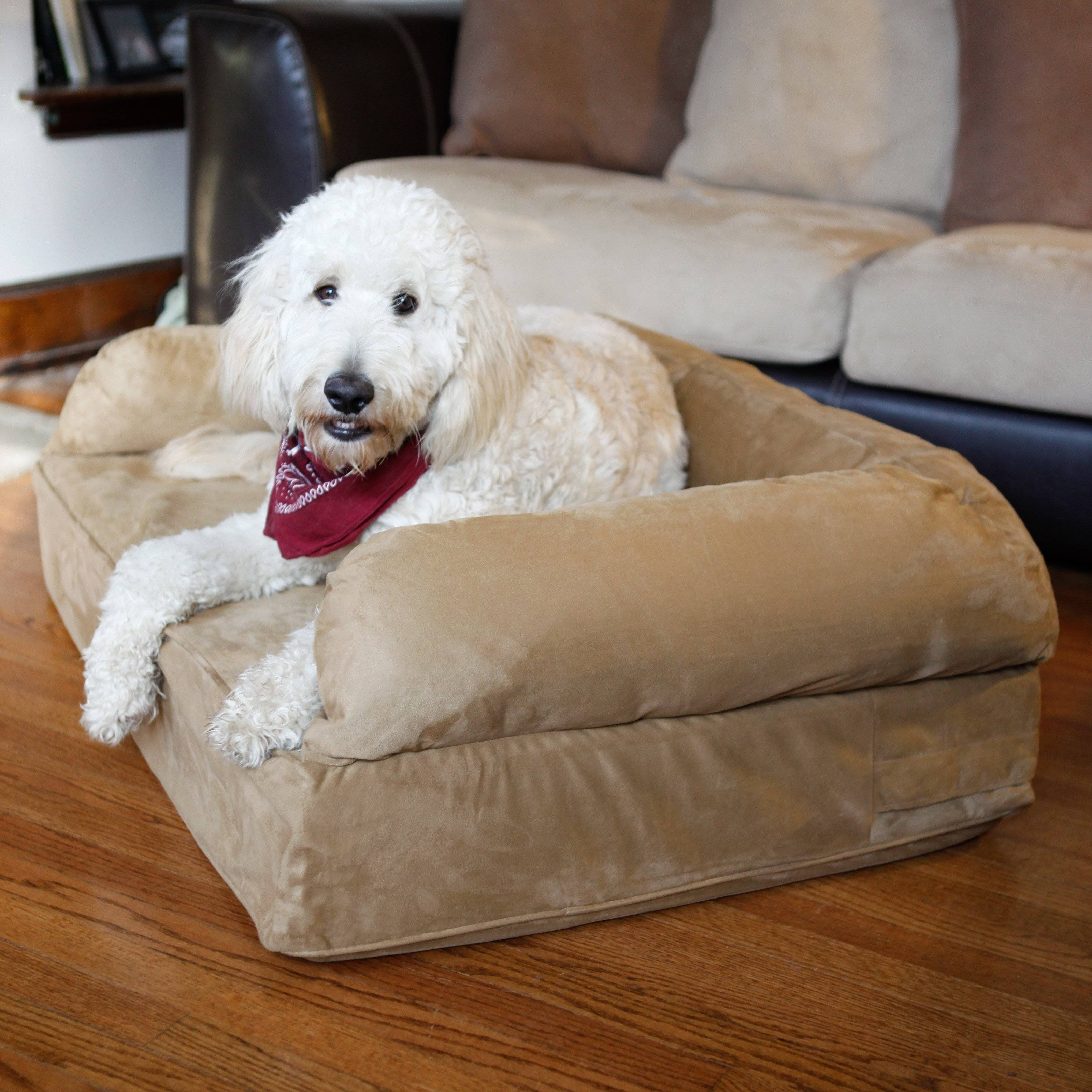 Snoozer Luxury Dog Sofa With Memory Foam | Hayneedle for Snoozer Luxury Dog Sofas (Image 7 of 15)