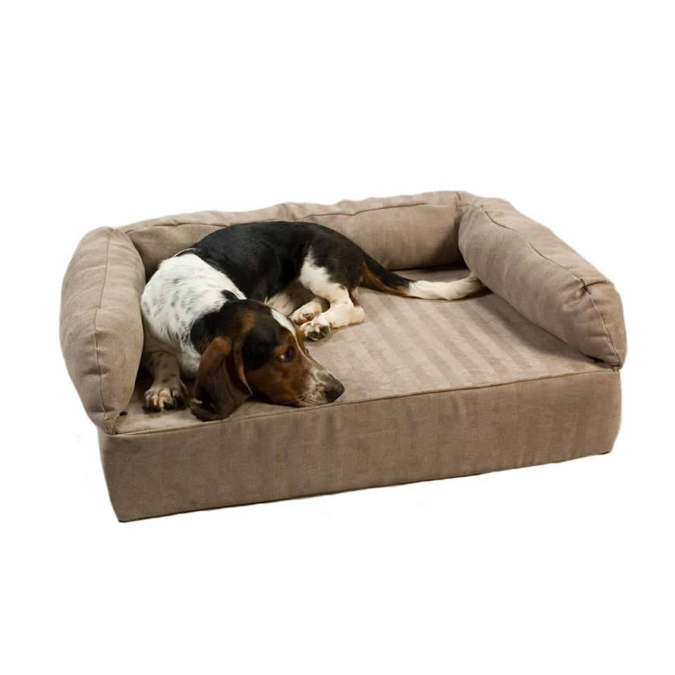 Snoozer Luxury Pet Sofa With Memory Foam - Pet Sofas - Dog Beds pertaining to Snoozer Luxury Dog Sofas (Image 12 of 15)