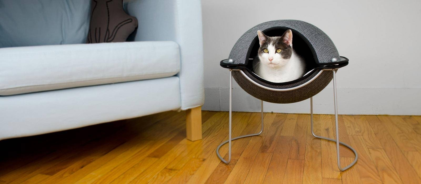 Sofa Ideas: Cat Tunnel Couches (Explore #8 Of 20 Photos) in Cat Tunnel Couches (Image 14 of 15)