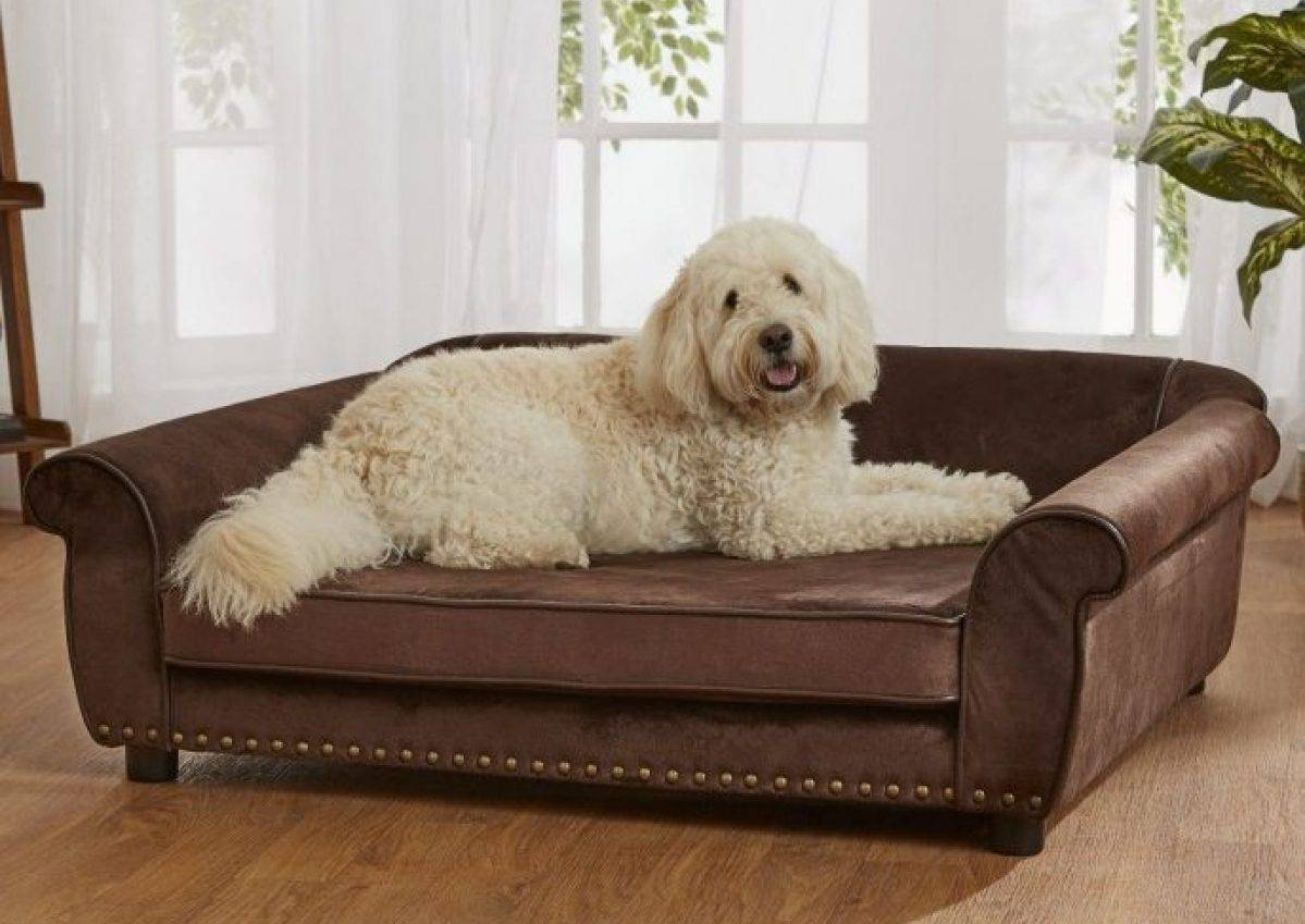 Sofa : Snoozer Luxury Dog Sofa Dog Couch Microsuede Fabric As Well within Snoozer Luxury Dog Sofas (Image 15 of 15)