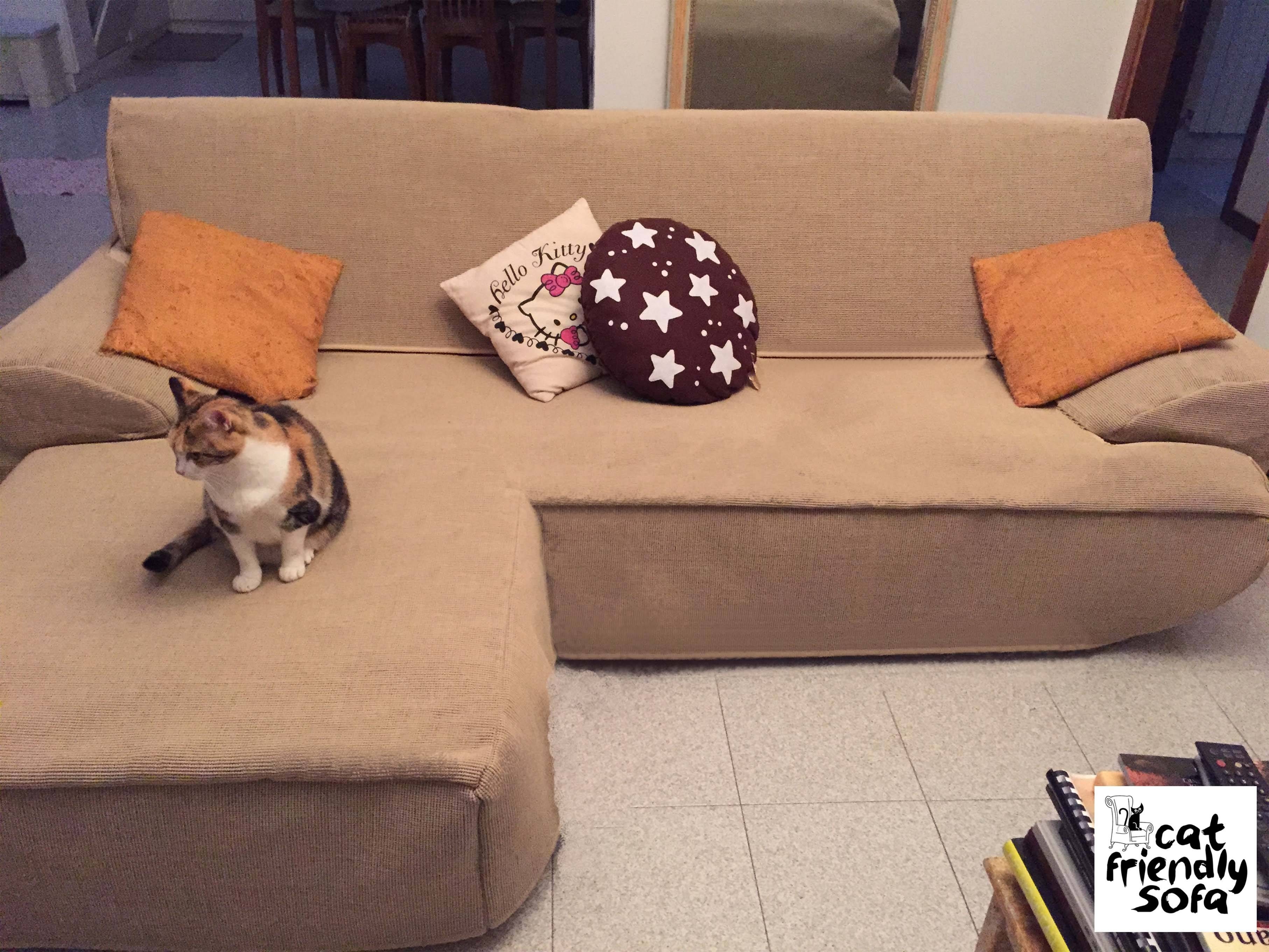 Tested Anti-Scratch Cover For Sofa | Cat Friendly Sofa with Pet Proof Sofa Covers (Image 11 of 15)