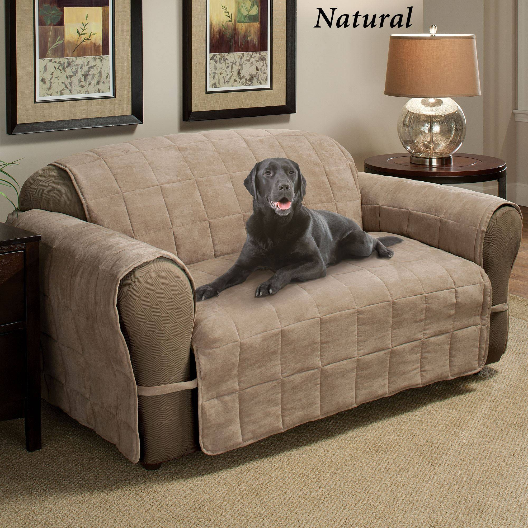 Ultimate Pet Furniture Protectors With Straps with Suede Slipcovers For Sofas (Image 15 of 15)