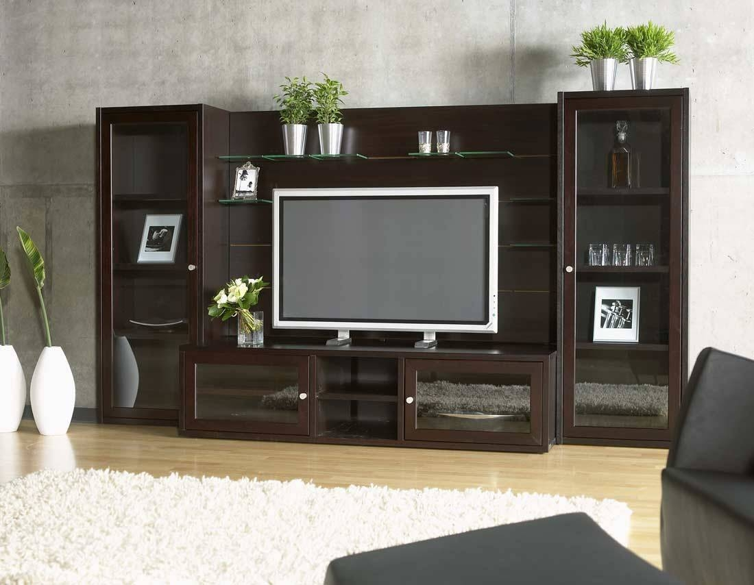 15 best tv entertainment wall units for Glass wall units for living room