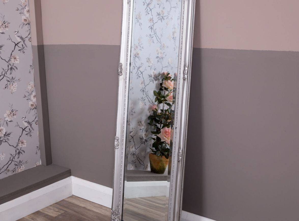 Mirror : Frightening Double Bevelled Rectangular Mirror Favored throughout Double Bevelled Mirrors (Image 11 of 15)