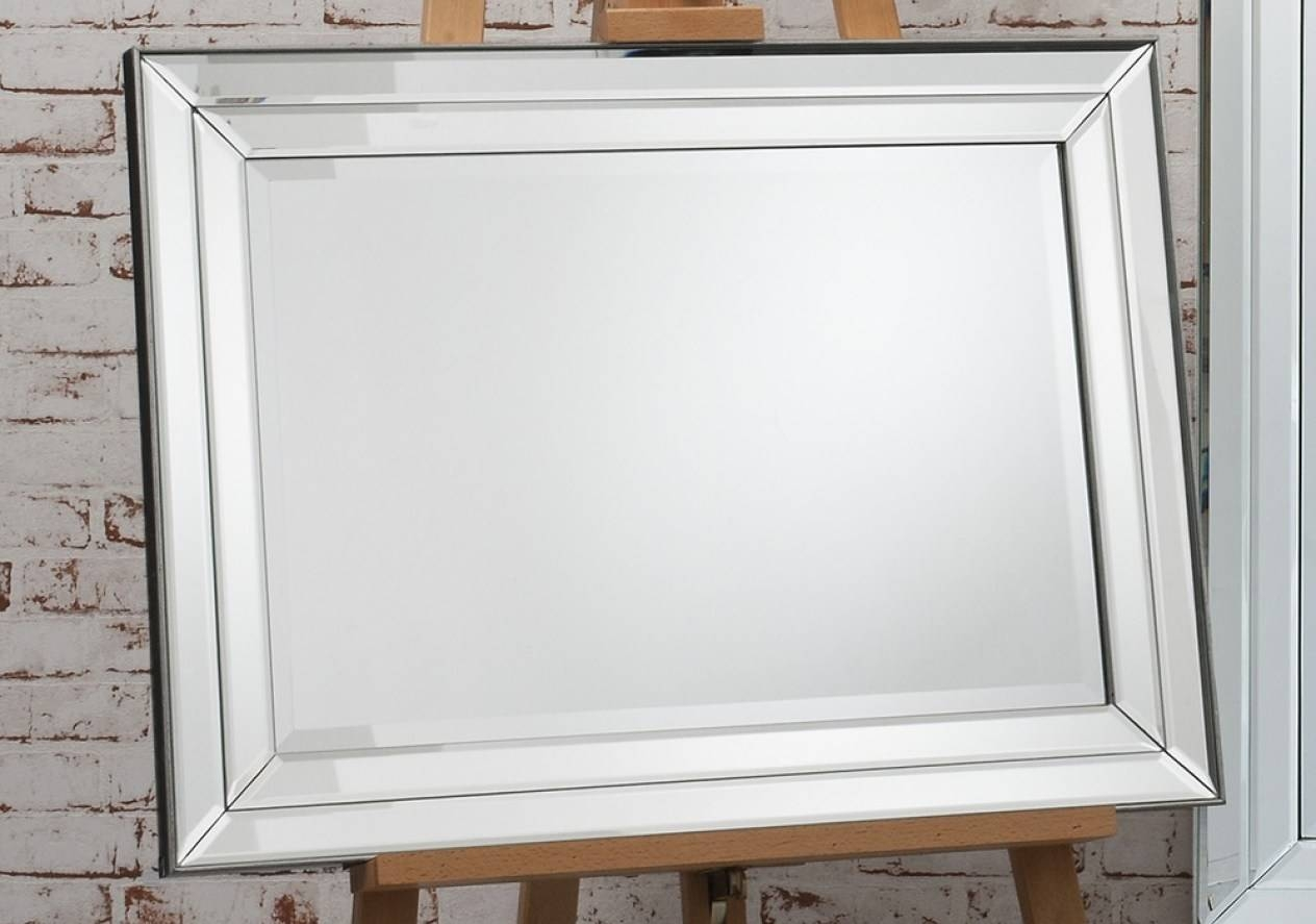 Mirror : Frightening Double Bevelled Rectangular Mirror Favored within Double Bevelled Mirrors (Image 12 of 15)