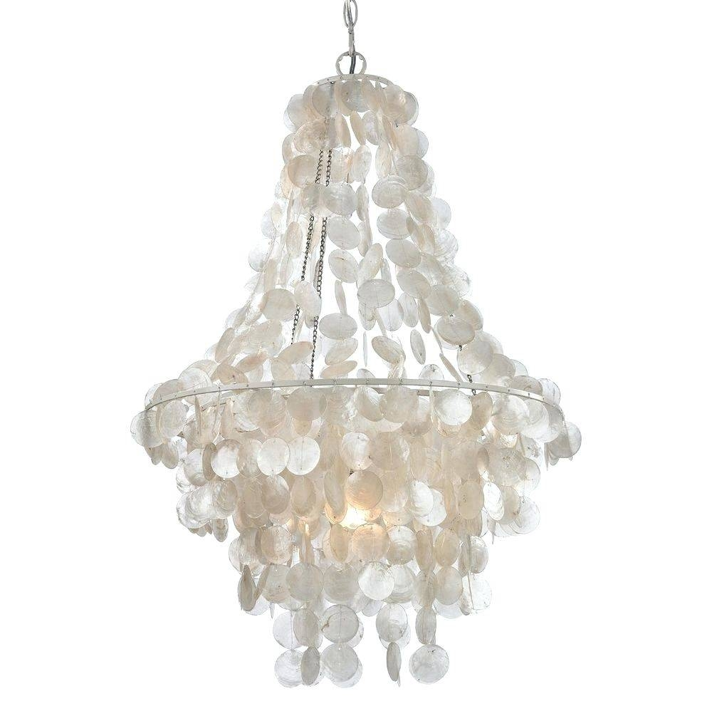 Chandeliers Design : Magnificent Oyster Shell Pendant Lighting With Shell Pendant Lights (View 5 of 15)