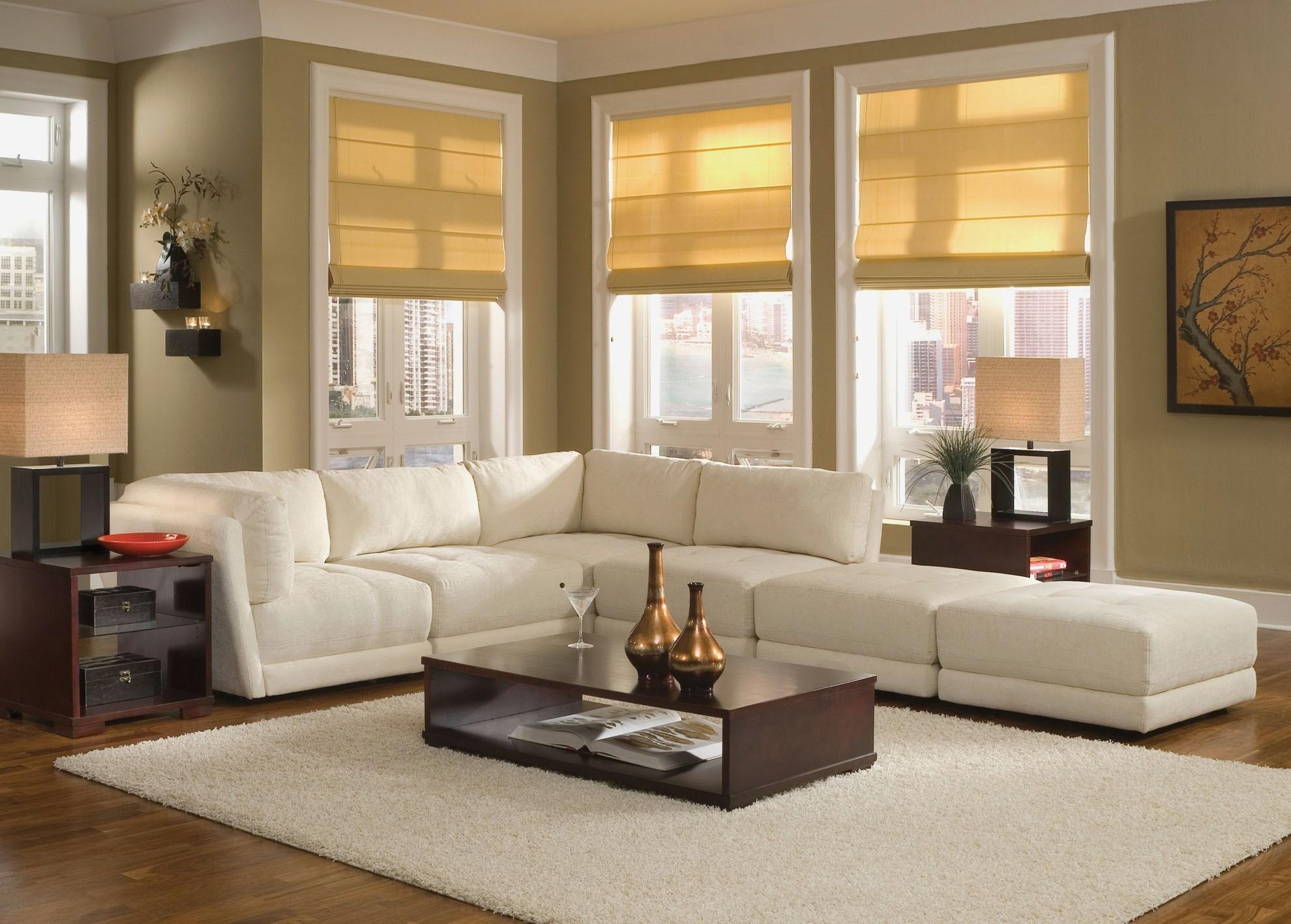Living Room : Houzz Living Room Sofas Houzz Traditional Living Room with regard to Houzz Sectional Sofas (Image 9 of 10)
