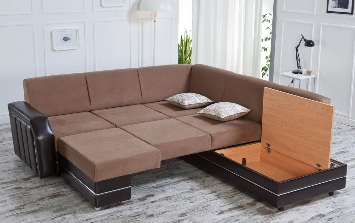 Popular Photo of Sectional Sofas That Turn Into Beds