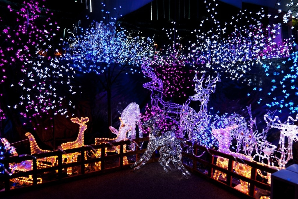 10 Superb Outdoor Christmas Decoration Ideas Inside Outdoor Wall Xmas Lights (Gallery 10 of 10)