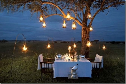 12 Incredible Summer Landscape Lighting Ideas with Hanging Lights on an Outdoor Tree (Image 1 of 10)