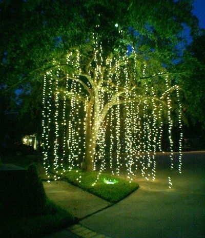 15 Diy How To Make Your Backyard Awesome Ideas 7 | Backyard, Dinners regarding Outdoor Hanging Tree Lights (Image 1 of 10)