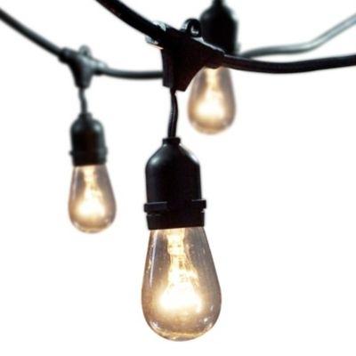 50 Fresh Outdoor Hanging Lighting Fixtures – Light And Lighting 2018 Throughout Outdoor Hanging Lights (View 5 of 10)