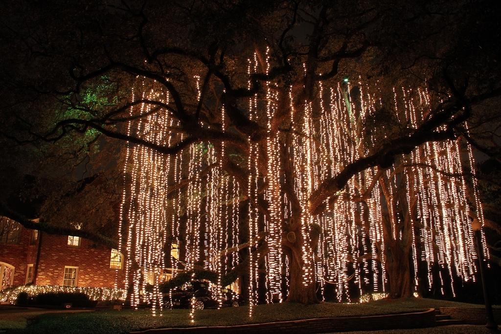 Christmas Light Spanish Moss | Christmas Lights Hanging Like… | Flickr regarding Hanging Outdoor Christmas Tree Lights (Image 3 of 10)