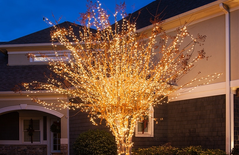 Christmas Yard Decorating Ideas throughout Hanging Outdoor Christmas Tree Lights (Image 4 of 10)