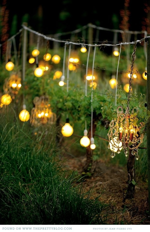 Craig & Carolyn – Under The Stars | Bulbs, Romantic And Lights with Hanging Outdoor Lights For A Party (Image 3 of 10)