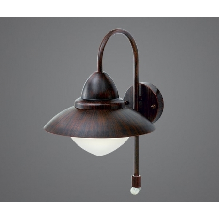Eglo 88711 Sidney 1 Light Outdoor Wall Light Antique Brown Finish throughout Eglo Lighting Sidney Outdoor Wall Lights With Motion Sensor (Image 2 of 10)