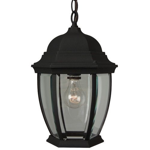 Found It At Wayfair - Cast Aluminum 1 Light Outdoor Hanging Lantern intended for Wayfair Outdoor Hanging Lights (Image 3 of 10)