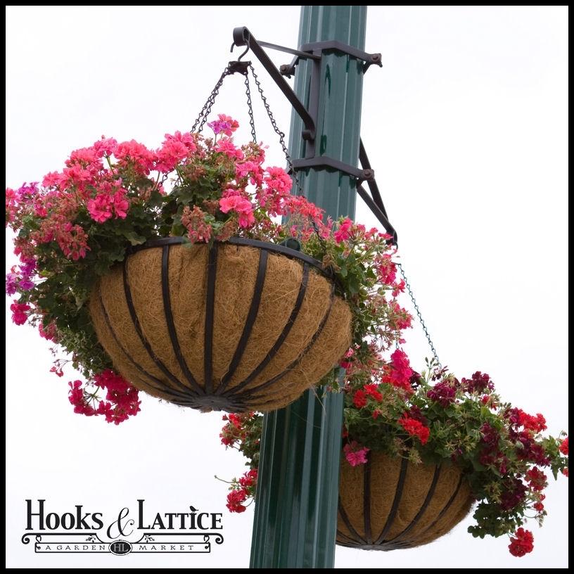 Hanging Basket Brackets, Outdoor Hanging Flower Baskets, Lamp Post Inside Outdoor Hanging Basket Lights (View 4 of 10)
