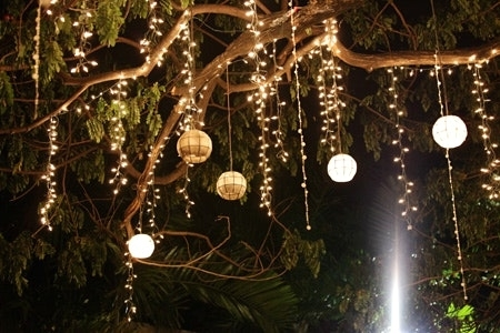 Hanging Lights From Trees And Outdoor Light Bulbs With Lovely To for Hanging Lights On An Outdoor Tree (Image 3 of 10)