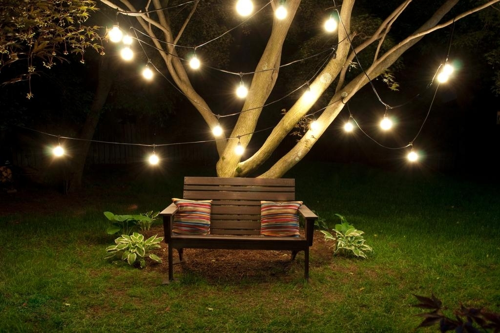 Hanging Lights On Large Outdoor Tree – Outdoor Designs In Outdoor Hanging Lights For Trees (View 7 of 10)