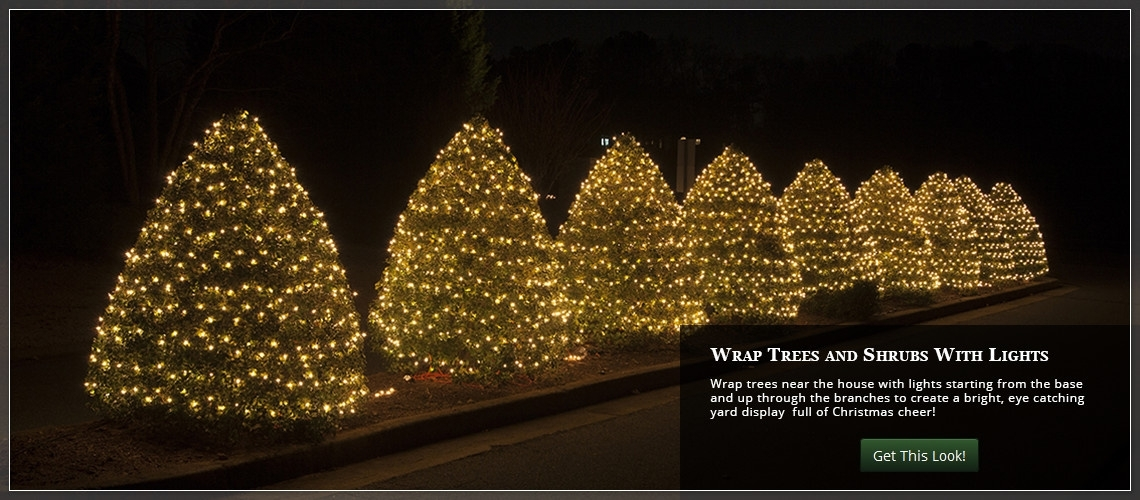 Hanging Lights On Large Outdoor Tree - Outdoor Designs throughout Hanging Lights on Large Outdoor Tree (Image 4 of 10)