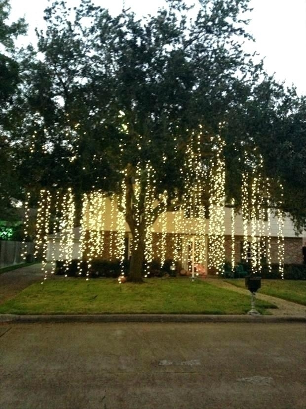 Hanging Tree Lights – Abundantlifestyle.club with Hanging Outdoor Lights On Trees (Image 8 of 10)