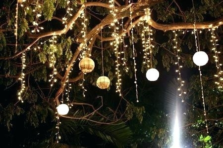 Hanging Tree Lights Outdoor Christmas Within On Trees Image