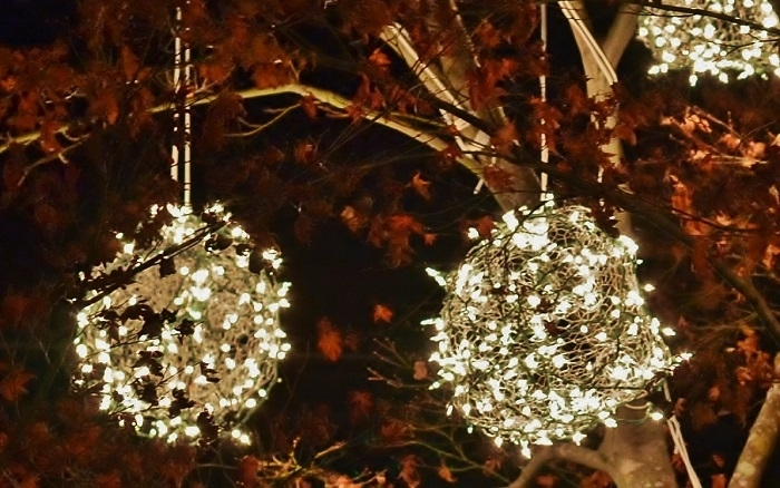 How To Make Lighted Christmas Balls inside Hanging Lights On Large Outdoor Tree (Image 6 of 10)