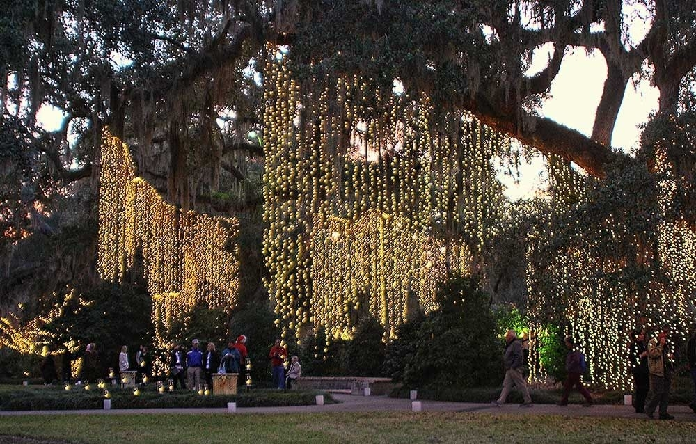 Lights In Trees As Brookgreen Gardens Celebrates Nights Of A with regard to Hanging Lights on an Outdoor Tree (Image 6 of 10)