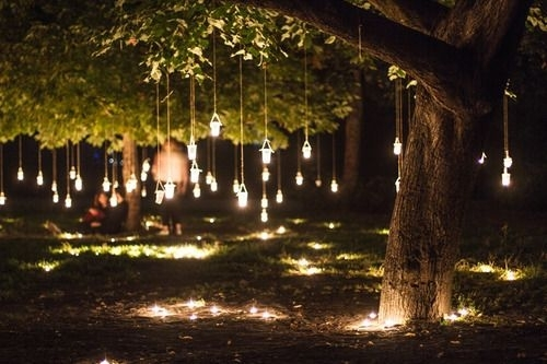 Mason Jar Lanterns Hanging From Trees On Both Sides Of Property (View 7 of 10)