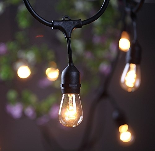 Outdoor Commercial String Lights- Amlight 24 Ft Heavy Duty for Outdoor Hanging Globe Lights (Image 3 of 10)