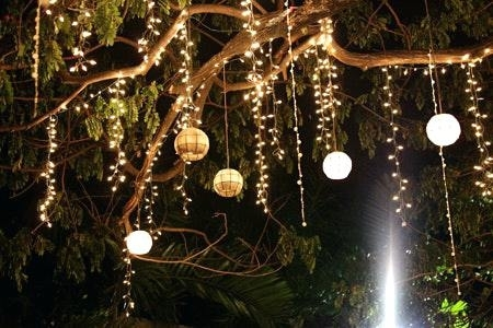 Outdoor Hanging Lights For Trees Hanging Lights From Trees And Tree For Outdoor Hanging Lights For Trees (View 3 of 10)