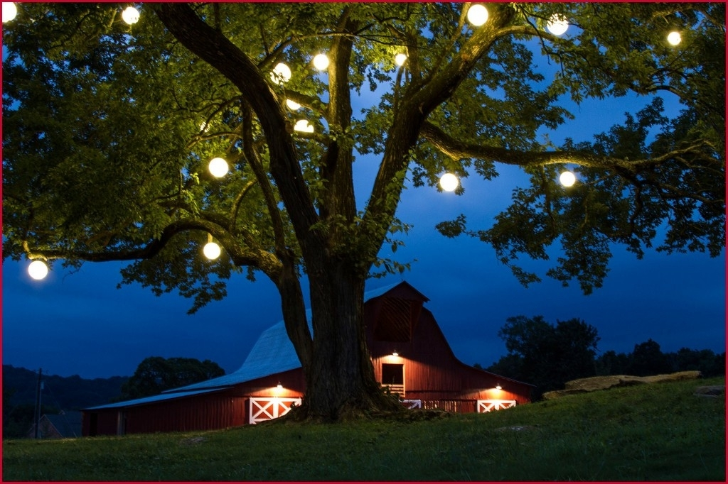 Outdoor Hanging Tree Lights » Best Of Nashville Tree Lighting with regard to Outdoor Hanging Tree Lanterns (Image 10 of 10)
