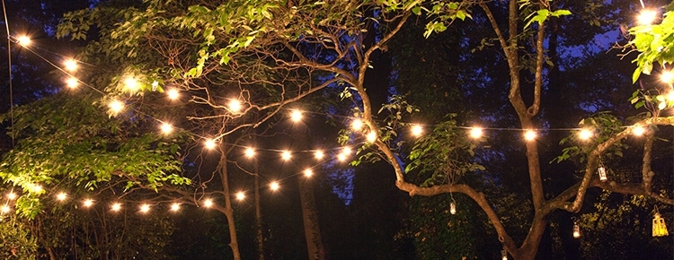 Patio String Lights And Bulbs Outdoor Hanging Tree Lights - American intended for Outdoor Hanging Tree Lights (Image 10 of 10)