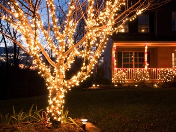 Seasonal Project: The Basics Of Hanging Outdoor Christmas Lights within Hanging Lights On An Outdoor Tree (Image 9 of 10)