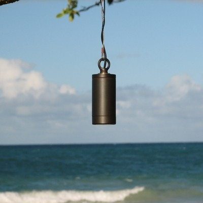 Tree Lights And Hanging Outdoor Fixtures For Outdoor Low Voltage Hanging Tree Lights (View 6 of 10)