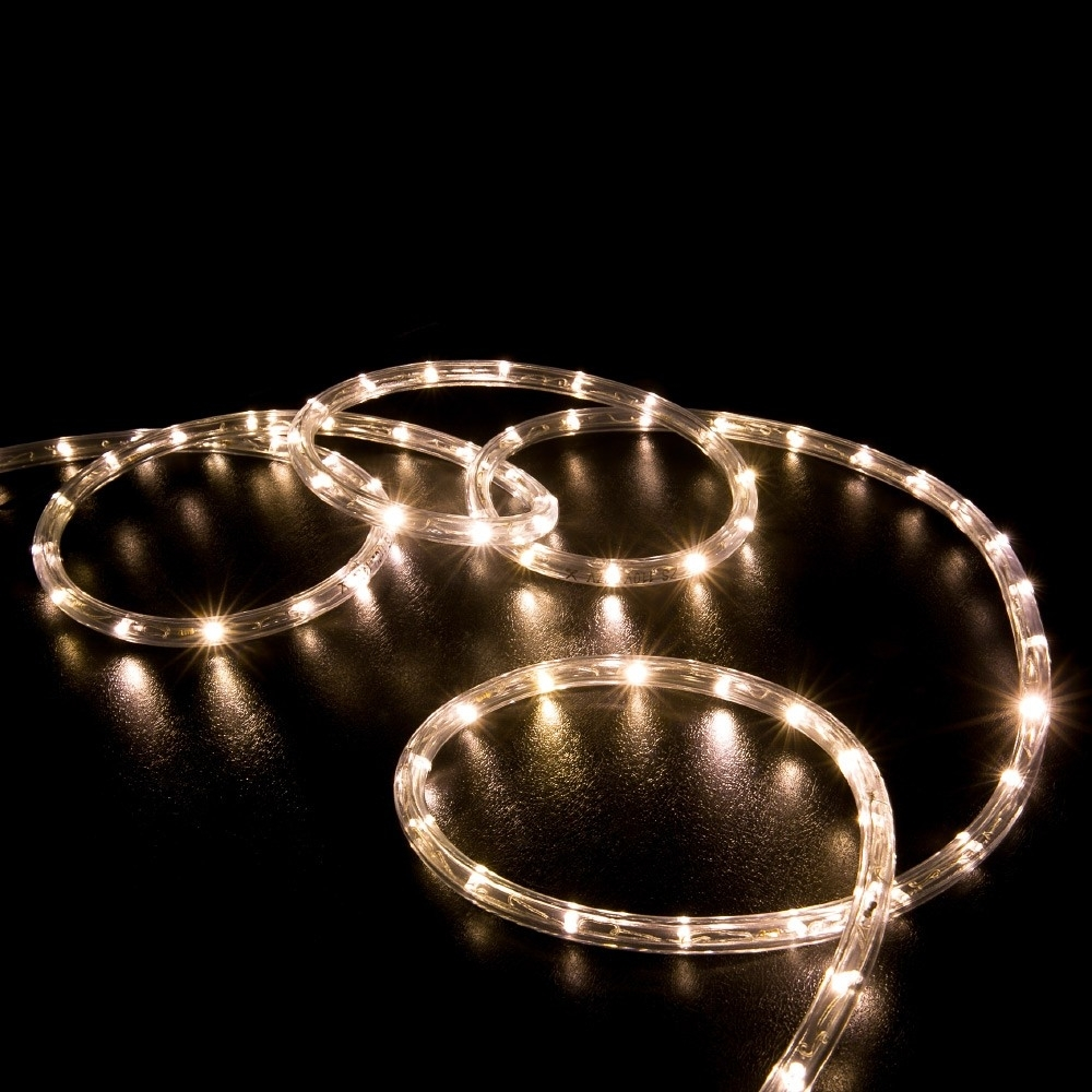 100' Warm White Led Rope Light - Home Outdoor Christmas Lighting with regard to Outdoor Christmas Rope Lanterns (Image 1 of 20)