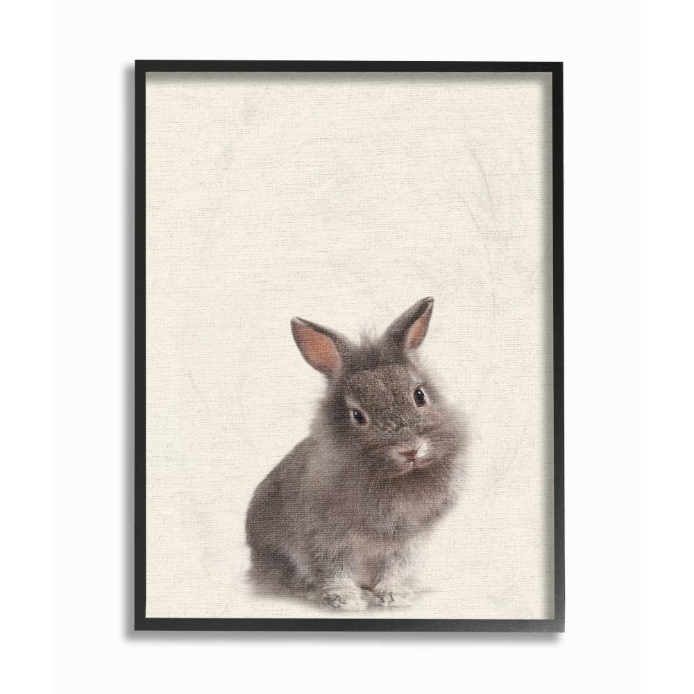 """16 In. X 20 In. """"just A Cute Bunny""""daphne Polselli Wood Framed Intended For Bunny Wall Art (Gallery 13 of 20)"""