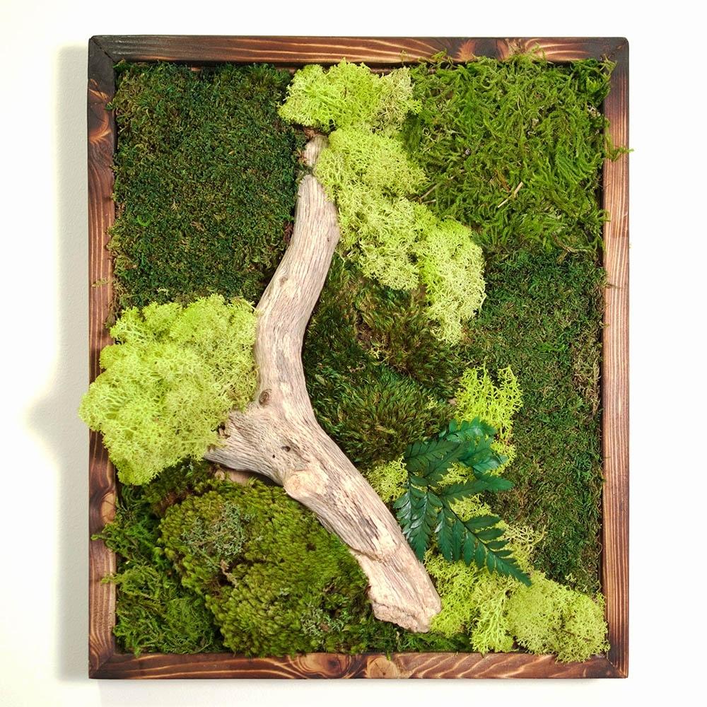 18X18 Moss Wall Art - Dark Frame - Real Bodywork in Moss Wall Art (Image 1 of 20)