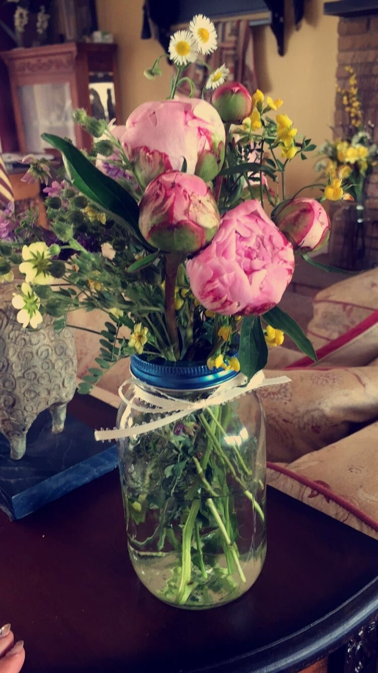 $4 Peonies From Kroger &fresh Picked Wildflowers From Around The Throughout Kroger Outdoor Lanterns (View 14 of 20)