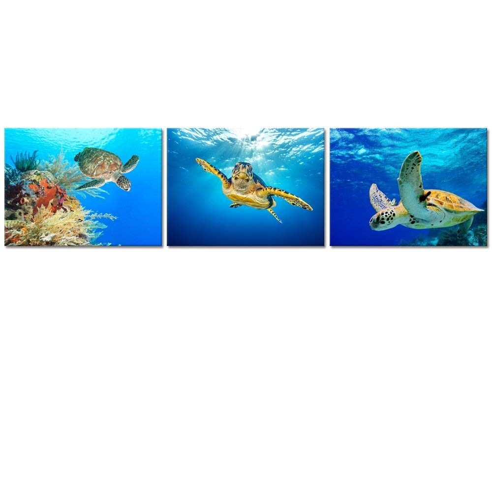 Popular Photo of Sea Turtle Canvas Wall Art