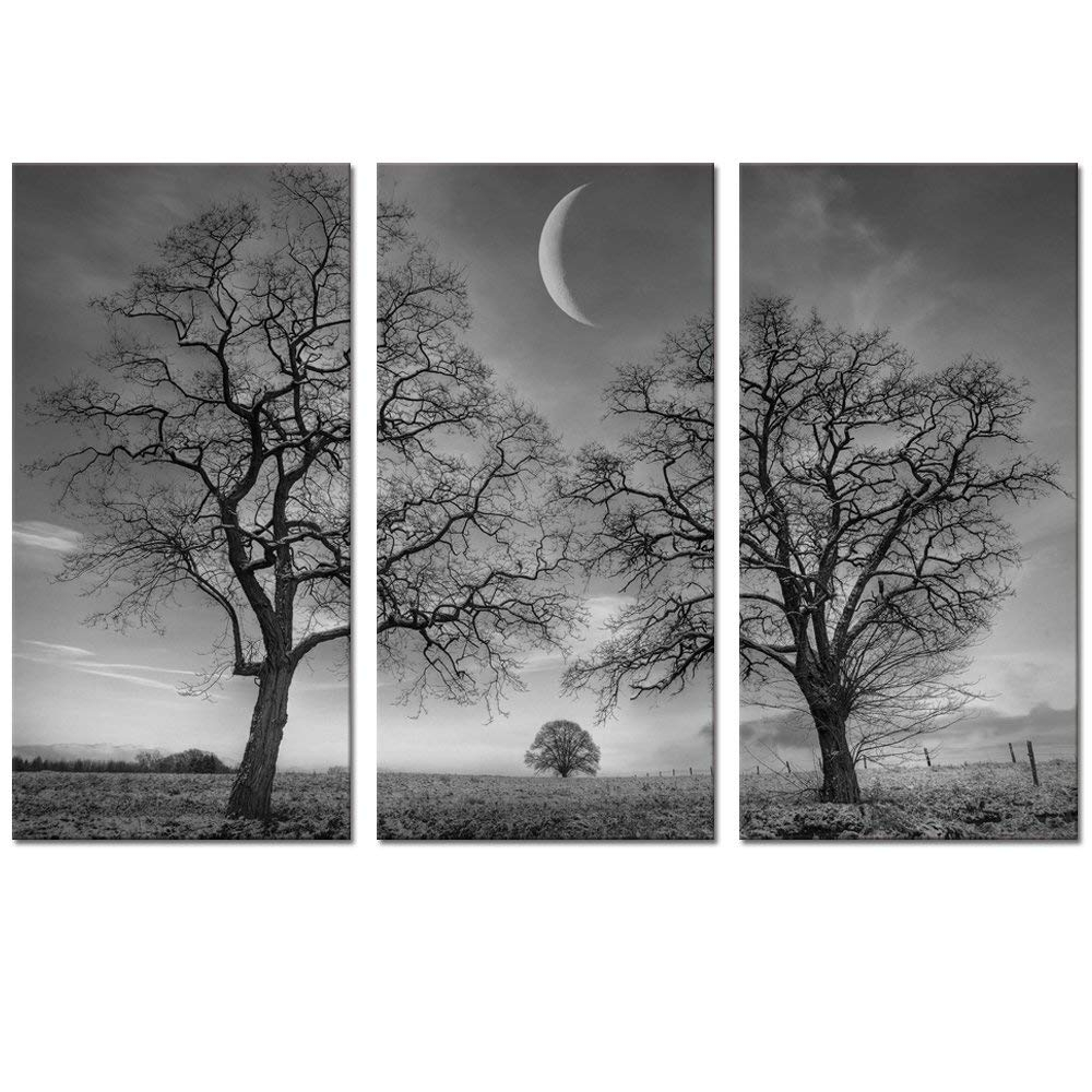 Amazon: Black And White Moon Canvas Wall Art Decor, Winter Tree throughout Black And White Canvas Wall Art (Image 5 of 20)