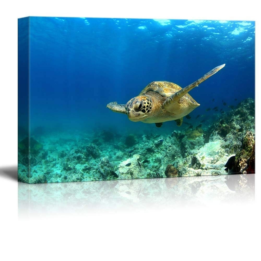 Amazon: Canvas Prints Wall Art – Green Sea Turtle Swimming Within Sea Turtle Canvas Wall Art (View 3 of 20)