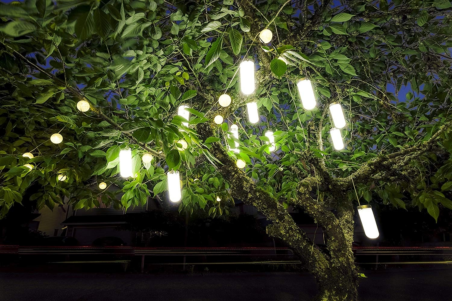 Amazon : Hanging Solar Garden Tree Light - Waterproof Solar with regard to Outdoor Lanterns For Trees (Image 3 of 20)