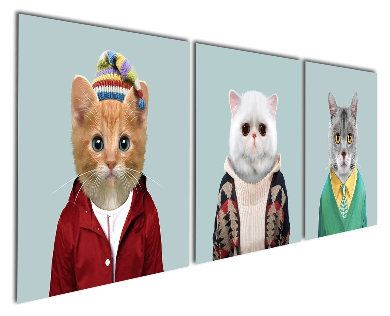 Animal World Series 6 White Grey And Yellow Cats Canvas Prints Within Cat Canvas Wall Art (View 5 of 20)