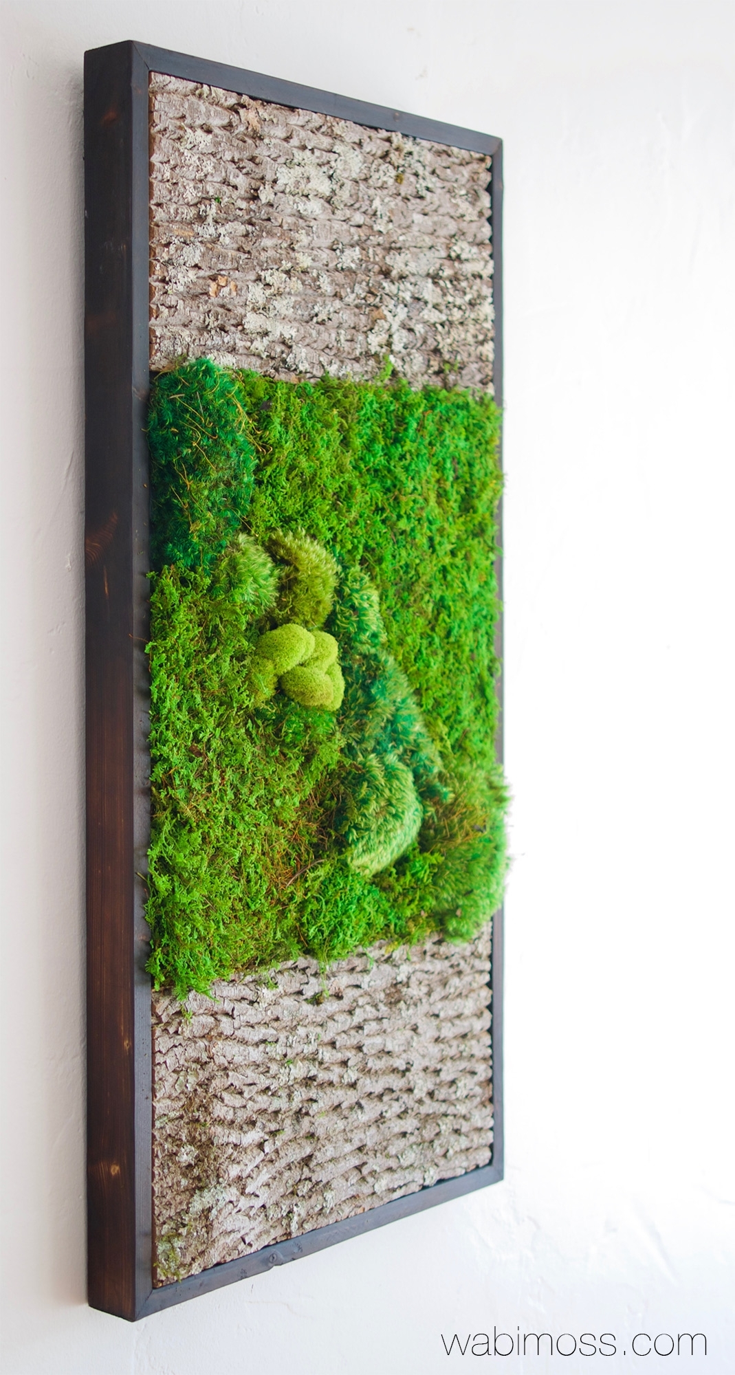 Bark And Moss Wall Art 36X18 - Wabimoss with Moss Wall Art (Image 2 of 20)